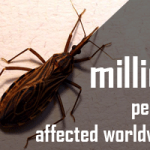 Words are not scary: Fighting the Chagas disease withinnovation